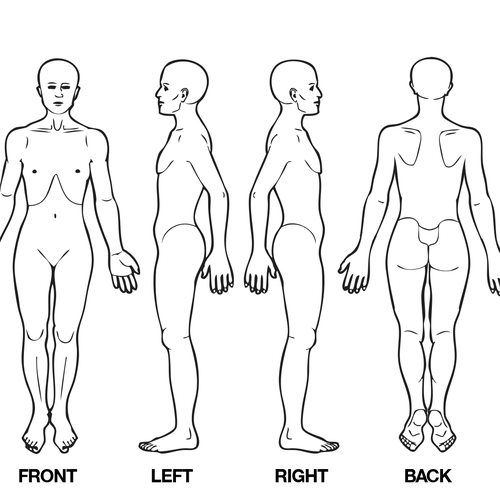 Body Diagram For Professional Massage Chart  Front  Back
