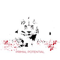 design by luana.stefan